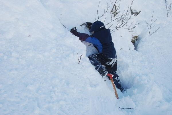 Ungar som boltrar seg i snøen
