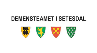 Logo Demensteamet i Setesdal