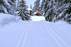 Nydelige vinterforhold under en tidligere utgave av Hauern. Årets utgave var preget av mildvær og vind. Foto: Gardsgutta.com.