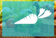 bannerproduce