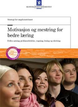 Strategi for ungdomstrinnet