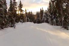 NM-løypene Gåsbu. Skjermutsnitt fra Stein Arne Negård/YouTube.