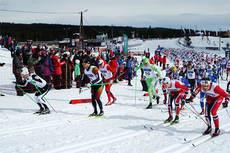 Starten har gått på 5-mila under NM på Budor 2013. Som man ser er vinneren Martin Johnsrud Sundby med langt fremme allerede fra start. Han er nr. 2 fra venstre. Foto: Erik Borg.