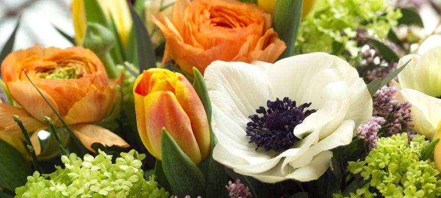 En blomstrende hilsen