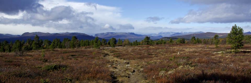 Panoramabilde fjell