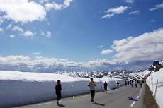 Vakre omgivelser og høye brøytekanter i Det Norske Fjellmaraton et tidligere år. Arrangørfoto.