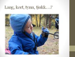 Sigurd_800x600