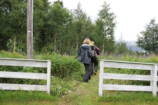Stien går ut fra Vassås kirkegård