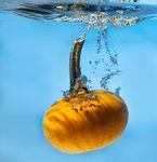 pumpkin-in-water-993x1024