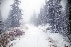 Tre kilometer med skispor står klart i Trysil allerede 22. oktober. Foto: Destinasjon Trysil.