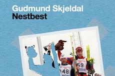Utsnitt av omslaget til Gudmund Skjeldals bok, Nestbest. Ei personleg idéhistorie om bronse, sølv og gull. Gitt ut på Cappelen Damm.