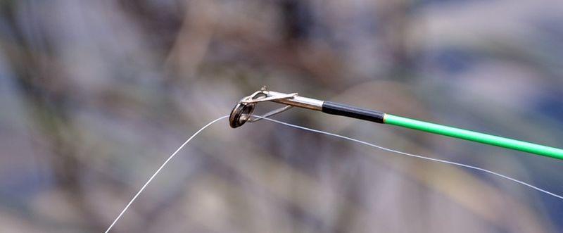 Fiske med fiskestang