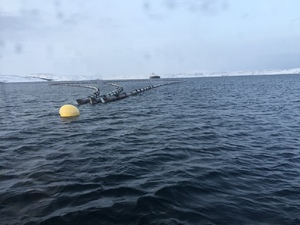 Oljeomlastning    lenser på sjø