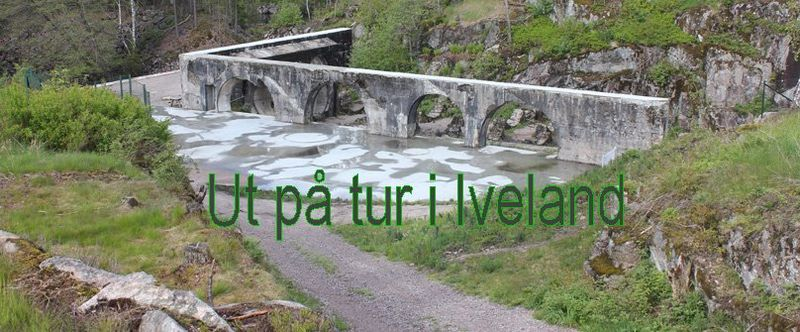Ut-paa-tur-i-Iveland-2015