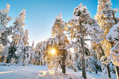Illustrasjonsbilde. Foto: Felgenhauer/NordicFocus.