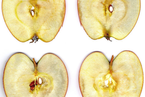 Oppdelte epler tegner et godt bilde av hva dette med oksidering dreier seg om. Kroppen din er utsatt for noe lignende. Foto: Creative Commons/Pixabay.com.