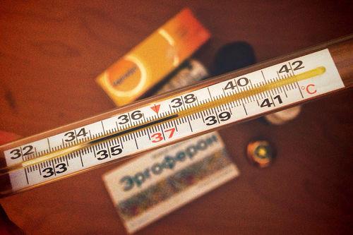 Det gjelder å være på godfot med termometeret. Foto: Creative Commons/Pixabay.com.
