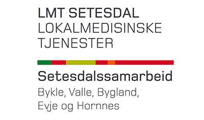 Logo LMT Setesdal