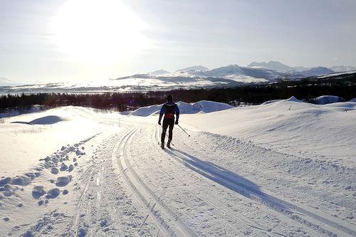 Fra løypa til Kvaløya Skimaraton. Arrangørfoto.