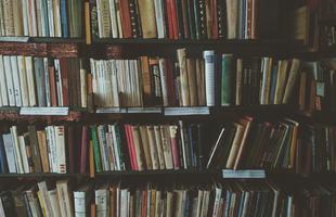 bookcase-1869616_1920