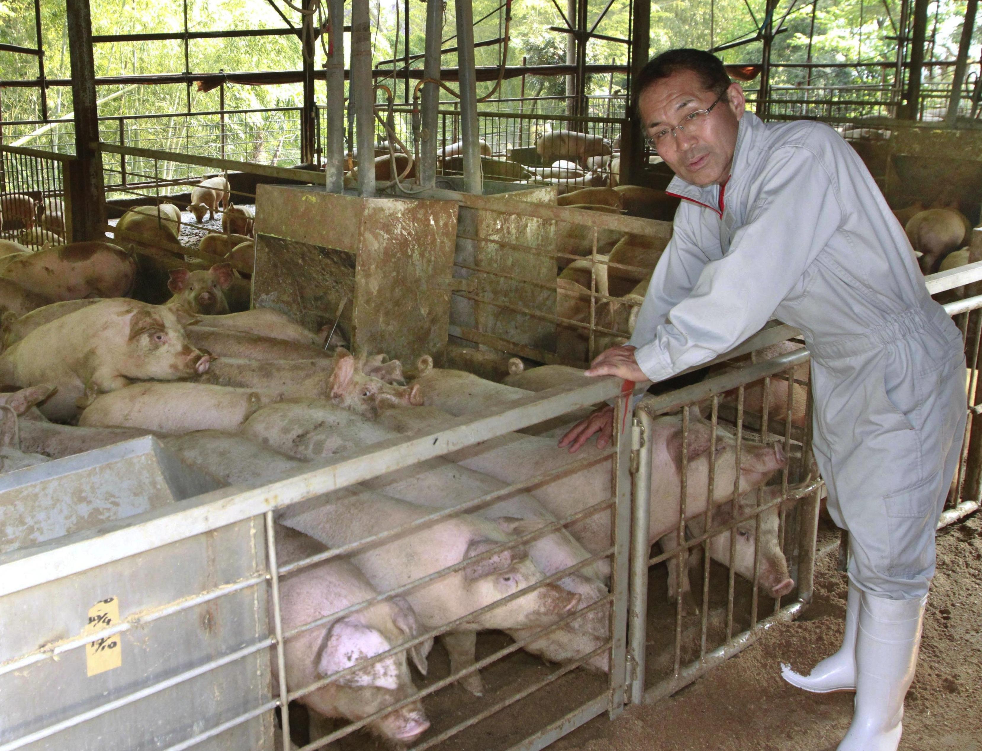 owner of Kitagawa Farm in the city of Shizuoka.jpg
