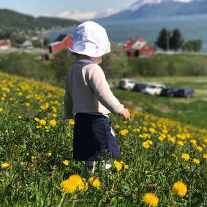 Leder_Troms_JEM_sommer-kvd400
