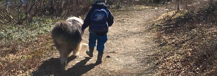 Støttekontakt -barn og hund
