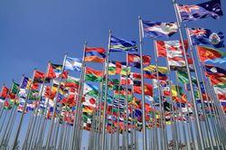 fn-dagen flagg