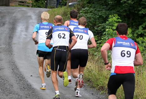 Ringkollklyveren. Foto: Geir Nilsen / Langrenn.com.