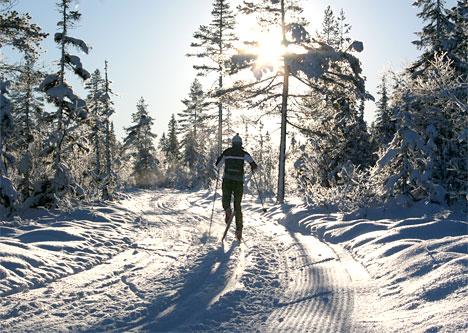 Ringkollen - Treningsrunden, november 2010. Foto: Geir Nilsen/Langrenn.com.