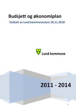 Vedtatt budsjett 2011