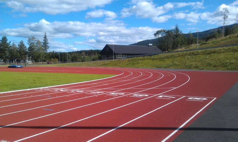 Linflåa stadion
