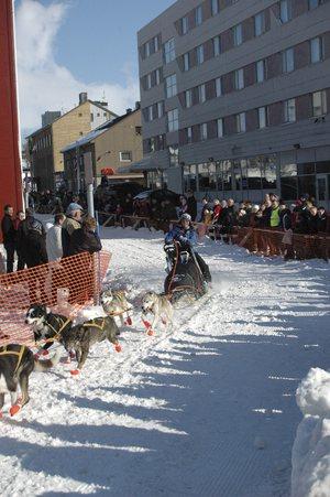 pasvik trail finnmarksløpet