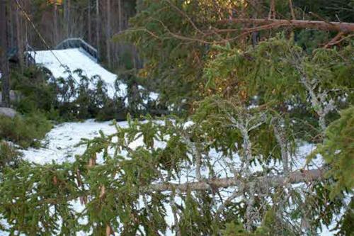 Stormen Dagmar har gjort store skader i Hudiksvall. Foto: Åke Ekblom.