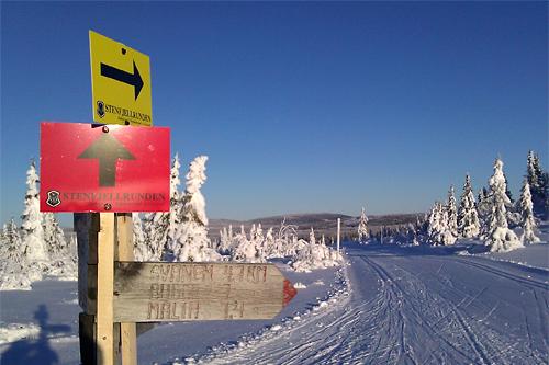 Fra Stenfjellrundetraséen i et tidliere år. Foto: Stein Arne Negård.