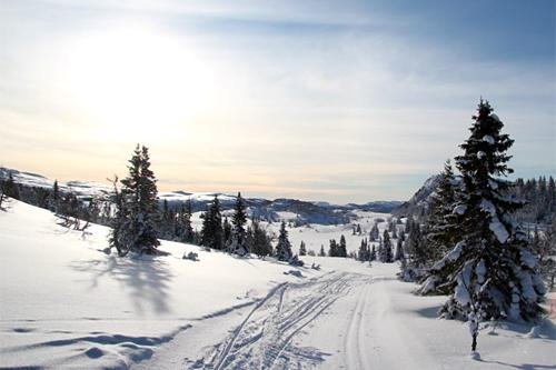 N3 Norefjellrennet - Befaring februar 2012. Arrangørfoto.