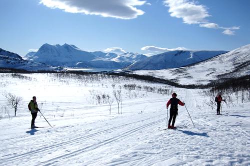 Illustrasjonsbilde fra løypetraseen til Kvaløya Skimaraton et tidligere år. Foto: Ole-André Helgaas.