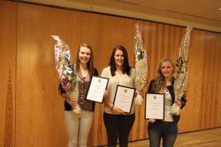 Kulturstipend 2012