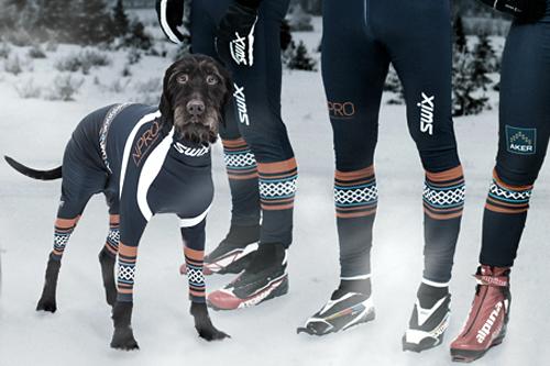 Team NPRO, nå også med skidress for Fido. Foto: Team NPRO.