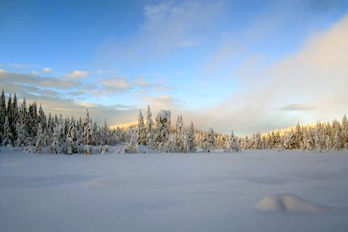 Et utrolig innbydende bilde fra Vestfold og Montebellorennet. Foto: Ole Kristian Skjørdal.