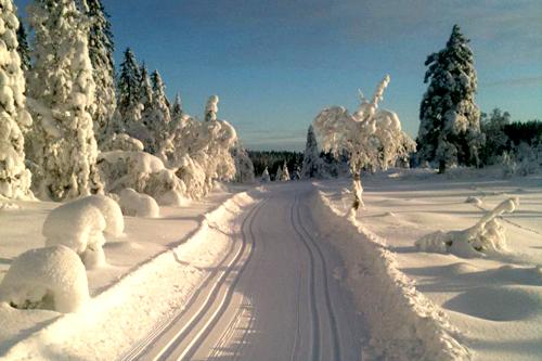 Gravdalsrunden i Montebellorennet. Foto: Ole Kristian Skjørdal.