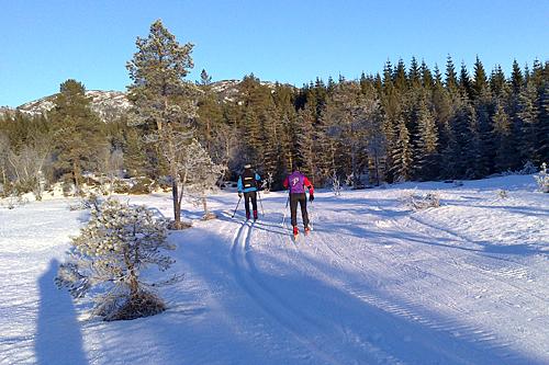 Det er fortsatt godt med snø og fine skiforhold på Osmarka. Foto: Arvid Dalen
