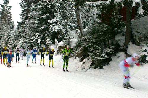 Eliten 1 kilometer etter start i Vester-Gyllen 2013. Foto: Svein Granerud/Vester-Gyllen.
