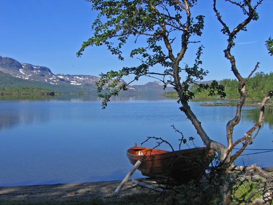 2253 Krutvatn Fra Nordlandsruta like ved statsskog hytten