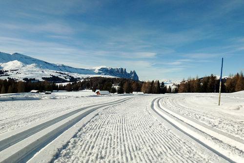 Det er populært å dra til høyden for å sanke treningstimer for langrennsløpere. Bildet er fra Seiser Alm. Foto: Petter Soleng Skinstad / Team Sport 1 Skinstad.
