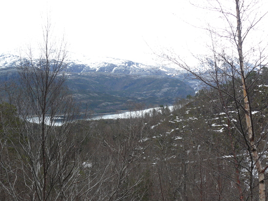 Utsikt mot Halsfjorden