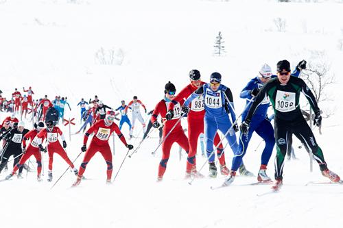 Løpere underveis i Storlirennet 2013. Foto: Dag H. Karlsen