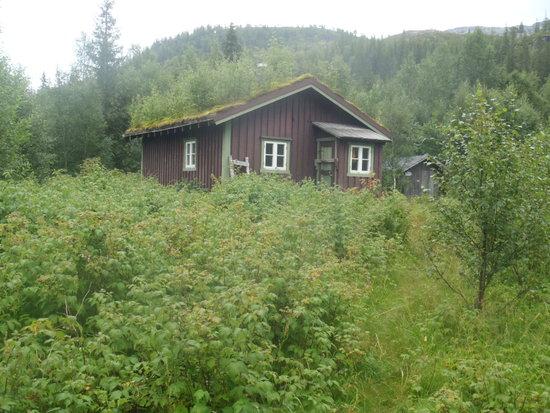 Strompdalskoia_1