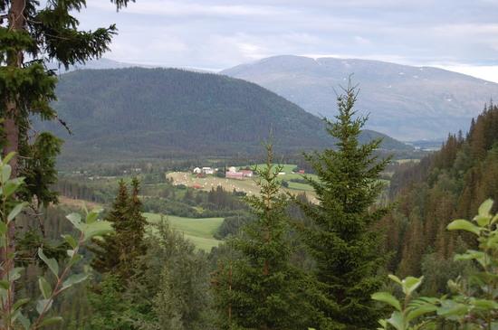 Motiv fra høyeste punkt på turen. Utsikt østover mot Baåsen og Stigfjellet