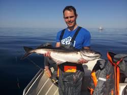 Chris Rayner, nice coalfish
